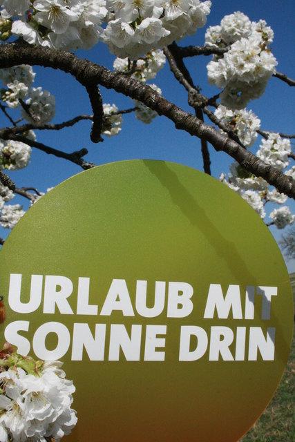 Sankt margarethen im burgenland partnersuche bezirk