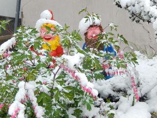 Die Gartenzwerge die sind sauer, wieder Kälte und Schneeschauer.