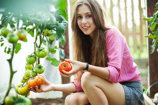 Unbehandeltes Gemüse aus eigenem Anbau wird immer beliebter.