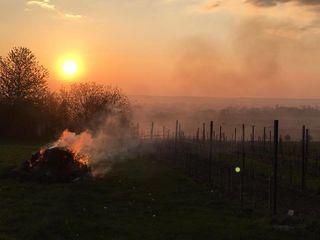 Am Wintner Berg und den übrigen Weinbaugegenden des Pinkabodens zogen Rauchschwaden durch die Nacht und den Morgen.