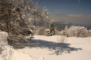 Letztes Wochenende präsentierte sich der Gaisberg noch einmal so richtig winterlich, des einen Freud´, des andern Leid :-)