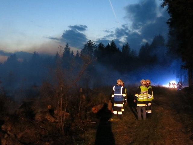 Mehrere Feuerwehren des Bezirks sind bei einem Waldbrand im Einsatz.