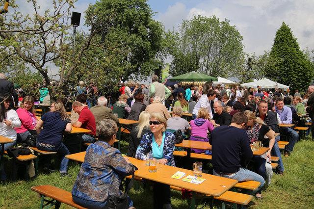 Ein Pucher Bauer sucht die Traumfrau - Hartberg-Frstenfeld