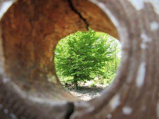 Durchblick, den ein Loch am Tor ermöglichte
