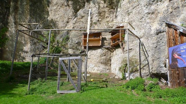 Die Waldrapp-Aufzuchtstation befindet sich auf der Westseite direkt am Fuße des Georgenberges.