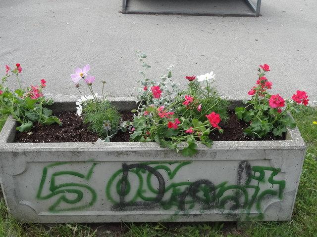 In mehreren Blumentrögen fehlen die Pflanzen
