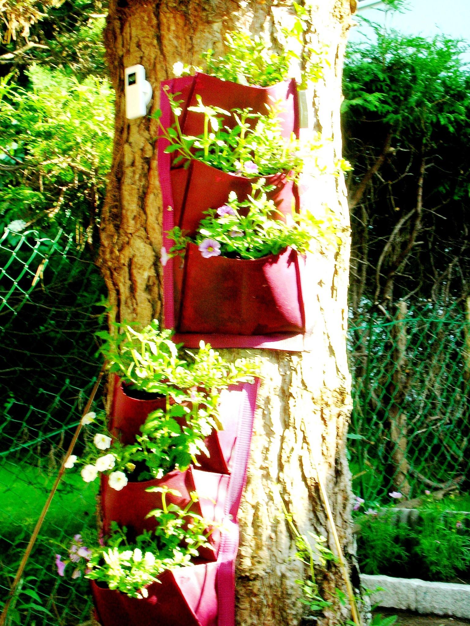 Vertical gardening idee wenn der platz knapp wird for Zeitung gartenidee