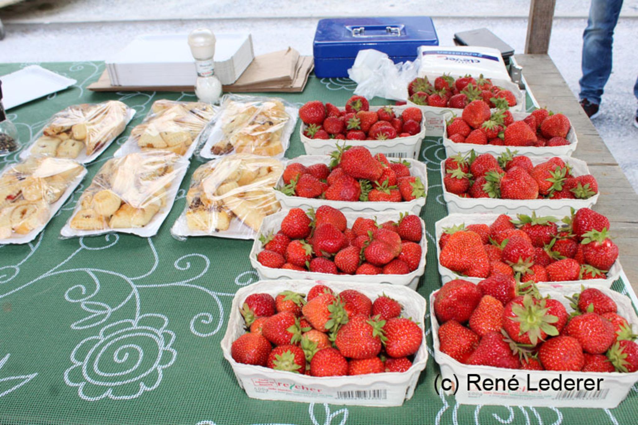 Neu-Guntramsdorf Dating Berry Kostenlose Partnervermittlung
