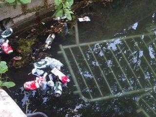 Bierdosen uvm. fischen Stadtgarten-Mitarbeiter verstärkt heraus