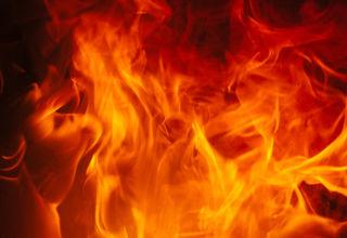 Derzeit wird noch untersucht, warum die Hecke in St. Peter Feuer fing
