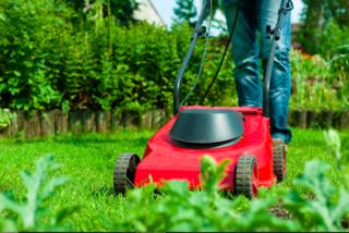 Rasenmähen an Sonn- und Feiertagen kann sicherlich zum Streitthema zwischen Nachbarn werden.