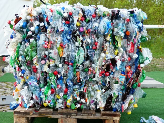 Täglich werden tausende Einweg-Plastikflaschen weggeworfen