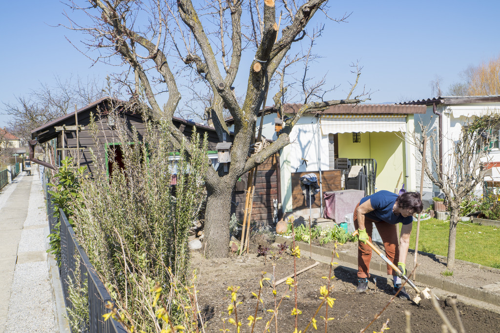 Heimgartenidylle: Die Kleingartenverordnung der Stadt Graz soll in Kooperation überarbeitet werden.