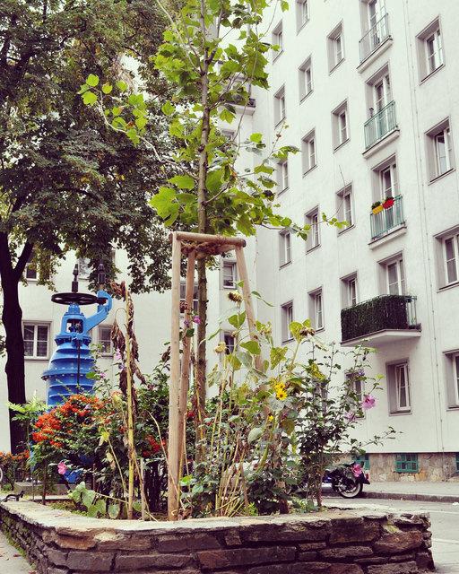 Garteln verbindet - das hat kürzlich auch eine europäische Studie zum Thema Nachbarschaft ergeben.