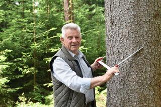 Günter Sonnleiter,Obmann der Kärntner Holzstraße, macht sich für die Vermarktung des heimischen Holzes stark