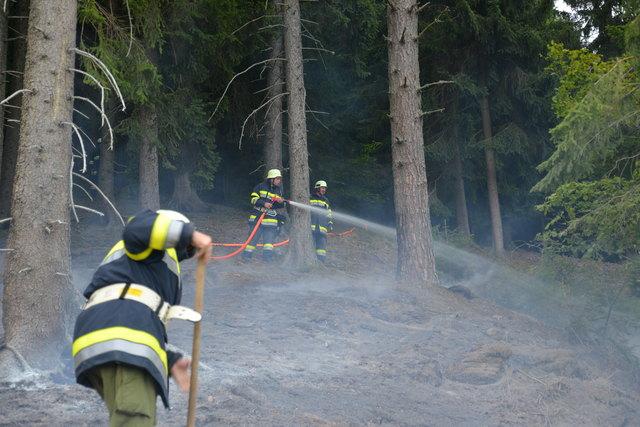 Brandgefahr: Ab sofort ist jegliches Feuerentzünden im Wald und waldnahen Gebieten verboten