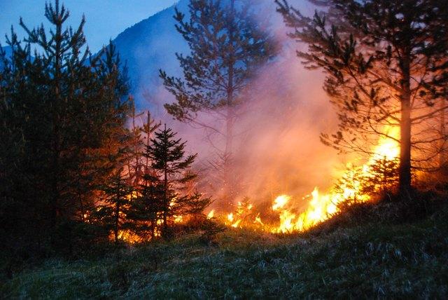 Aktuell ist das Entzünden von offenem Feuer und Rauchen in Waldgebieten verboten