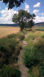 Wegen Trockenheit: Horner Altbach (auch Mödringer Bach genannt) ohne Wasser!