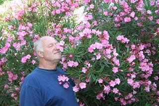 Hans Hallwirth in seinem Oleander-Paradies.