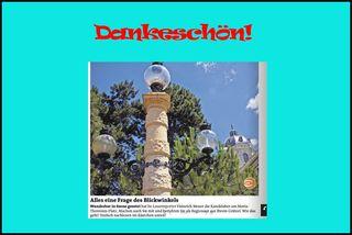 Für die Verbreitung meines Fotos in allen Wiener Ausgaben!