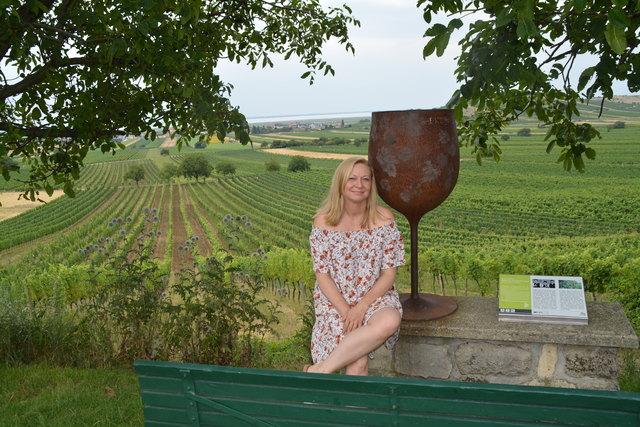 Vom Weinlehrpfad hat man einen herrlichen Blick. Hier setzt sich die Tourismusobfrau gerne hin und schaut zum See.