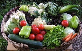 Das frische Gemüse kommt aus der Region.
