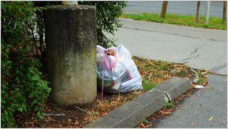 Müll neben unserer Parkplatzeinfahrt abgelegt