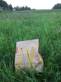 Noch muss das McDonald's-Sackerl aus St. Pölten auf die leere Wiese in Neulengbach importiert werden.