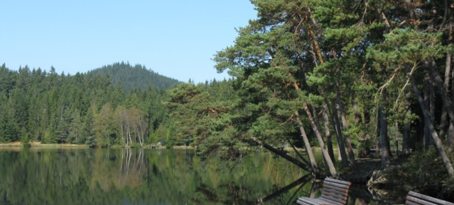 Der Edlesbergersee auf Archivbildern der Gemeinde Gutenbrunn.