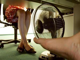 """Arbeiterkammer-Experte Christian Haberle klärt auf:  """"Nie den Arbeitsplatz verlassen, wenn es heiß ist. Damit könnte man einen Entlassungsgrund liefern"""""""