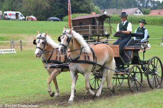 Der einzige Starter für die Pferdefreunde Rabnitztal Manfred Kolar