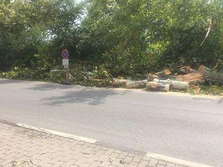 Bruckmühlpark in Bruck - auch dort eine Spur der Verwüstung.