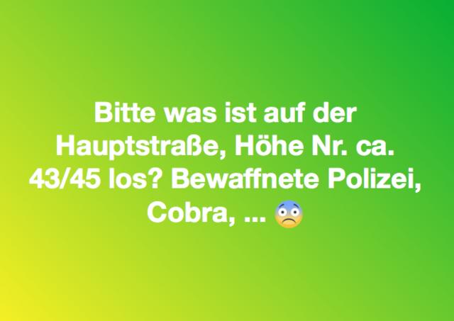 Pressbaumer rätseln in der Gruppe Pressbaum/Tullnerbach über den Einsatz von Polizei und Cobra