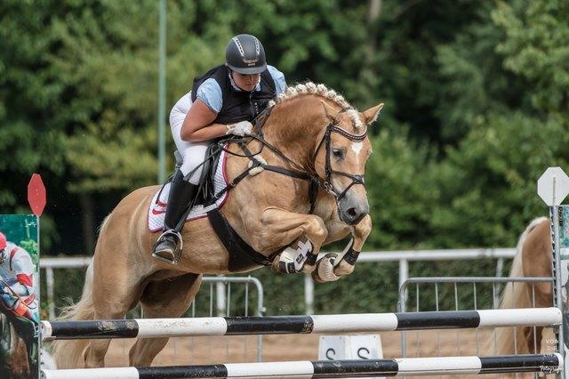 Petra Pammer und ihr Pferd Waliero del Cambino – Spitzname: Schurli – erreichten Platz vier.