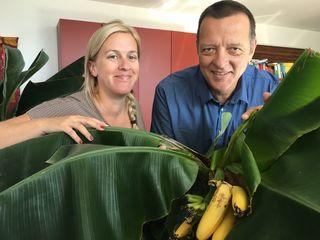 """Claudia Schönegger und Harald Seiss mit ihrer """"Bananenplantage""""."""