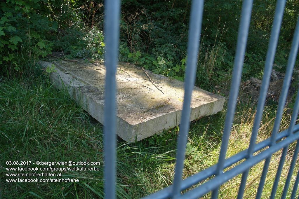 Im Laufe des kommenden Jahres rechne man mit einem Wiederaufbau des ursprünglichen Objektes, heißt es vom KAV.