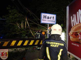Umgestürzte Bäume sorgten auch bei den Florianijüngern der Feuerwehr Hart für viel Arbeit.