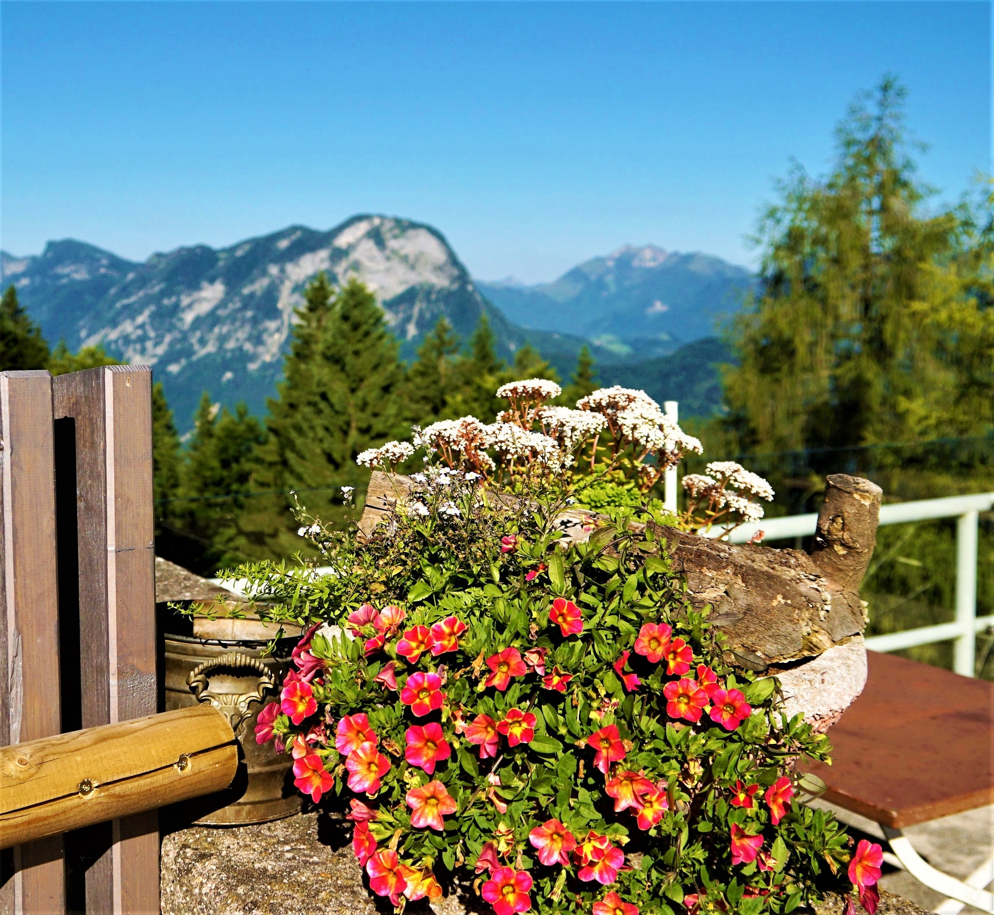 blumen auf der terrasse kufstein. Black Bedroom Furniture Sets. Home Design Ideas