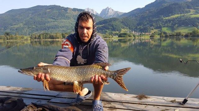 Große Fänge beim 24 Stunden Hegefischen am Gaishorner See