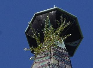 ... wer errät als Erste/-r auf welchem sehr bekannten Gebäude im schönen Villach sich dieser kecke Baum eingenistet hat ;-) . Sobald es gelöst ist bzw. falls es die nächsten Tage nicht gelöst wird bzw. werden kann, werde ich es auflösen :)