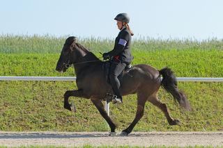 Andorfs Reiterinnen präsentierten sich im niederösterreichischen Langschwarza in bestechender Form.