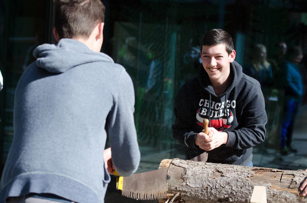 """High-Tech im Wald: Direkt bei der Schlägerung dabei zu sein, ist eines der Programmhighlights beim """"Holzjobtag""""."""