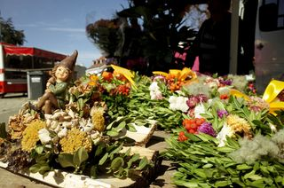 Köstliches von lokalen Anbietern auf dem wöchentlichen Bauernmarkt in Klosterneuburg.