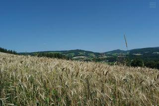 """JPG-Bild """"out of cam"""" . Ein schönes Erinnerungsfoto von der Landschaft im Urlaub. Mehr ist es aber für mich nicht."""