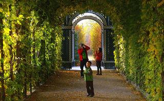 Der Herbst ist da! Die Blätter der Bäume färben sich bunt - ein wunderschönes Farbspiel beginnt sich über die grünen Plätze Wiens zu erstrecken. Der Klassiker ist sicherlich der Schlosspark in Schönbrunn. © Gerhard Singer