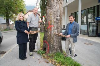 Bürgermeisterin Elisabeth Blanik mit martin König und Harald Haider vom Baubezirksamt (v.l.).