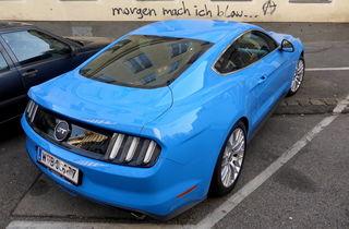 """Die in Wien überhandnehmende Vandalisierung ! Gefühlte tausend Mal ist mir das Graffiti """"morgen mach ich blau"""" in den vergangenen Jahren in Wien begegnet."""
