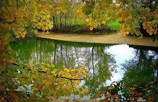 Ich liebe den Herbst. Die Tage werden kürzer, das Wetter kühler und die Natur ist voll im Wandel.