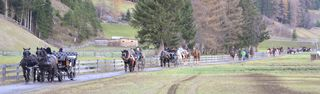 Zum zweiten Leonhardiritt in Umhausen lädt der Pferdesportclub Ötztal ein.