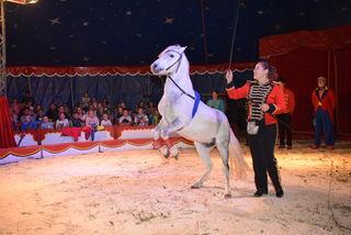 Circus Vegas in Pabneukirchen